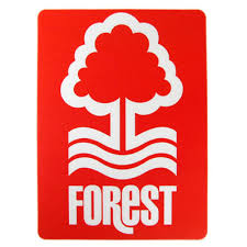 shop.nottinghamforest.co.uk